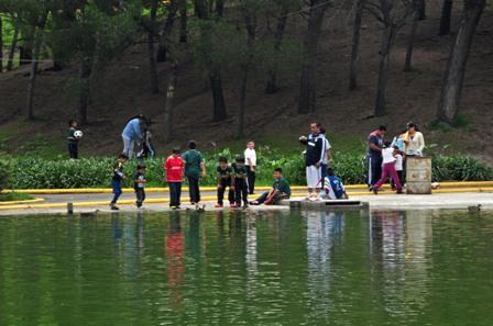 Lodos en el fondo del lago